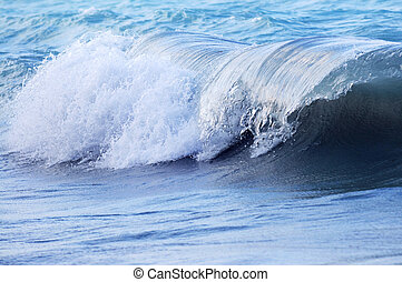 Wave in stormy ocean - Big crashing wave in a stormy ocean