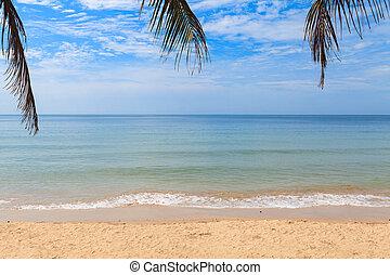 wave on sand beach