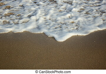 Wave on the sandy beach