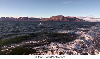 Waves and water trail track from ship in Arctic Ocean on...
