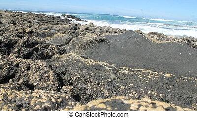 waves chrushing on Canary Island Fuerteventura.