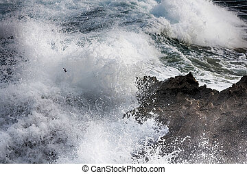 Waves crashing against rocks