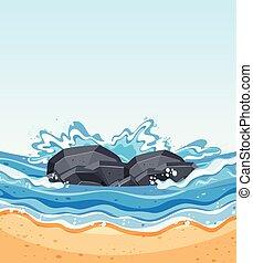 waves crashing aganist rocks
