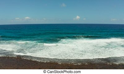 Waves crashing on a coral reef. - Ocean waves crashing on...