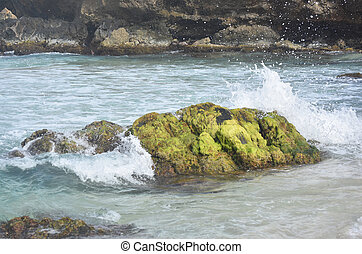 Waves Crashing on a Moss Covered Rock on Boca Keto -...