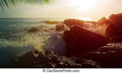 Waves Crashing over a Rocky Tropical Coastline in the Late Afternoon