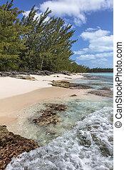 Waves crashing over coral along the shoreline in the Orange Creek area of Cat Island, Bahamas.