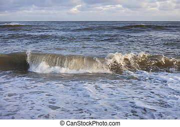 Waves in sea.