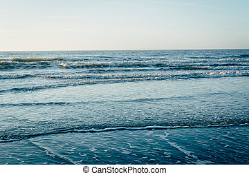 Waves in the Atlantic Ocean, in Folly Beach, South Carolina.