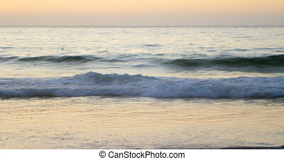 Waves in the beach at dusk 4k - Beautiful waves in the beach...