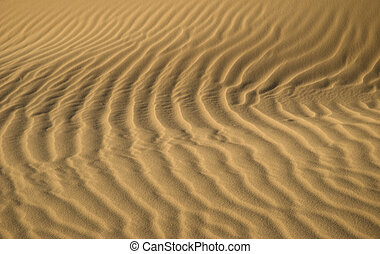 Waves in the Sands