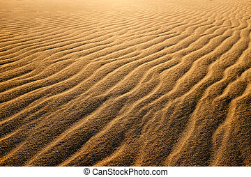 Waves of sand dunes.