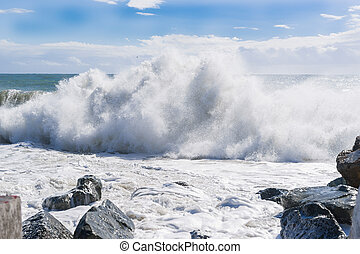 Waves of the sea