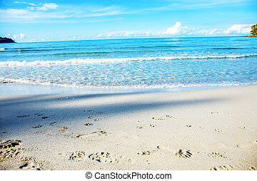 Waves on beach with sky.