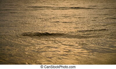 Waves on the beach. Morning at sea, sunrise on the sea beach