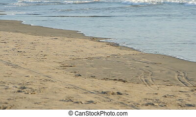 waves touching sandy beach
