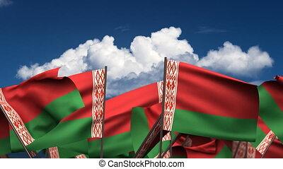Waving Belarus Flags