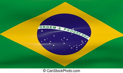 Waving Brazil Flag