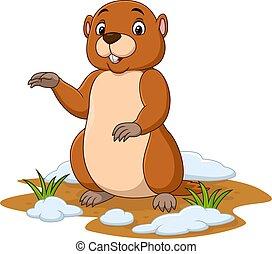 waving, caricatura, mão, groundhog, engraçado