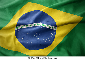 waving colorful flag of brazil.