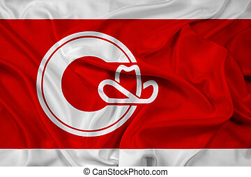 Waving Flag of Calgary