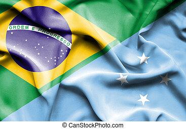 Waving flag of Micronesia and Brazil