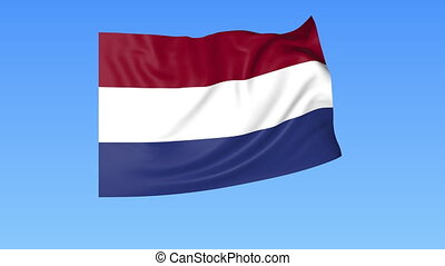 Waving flag of Netherlands, seamless loop. Exact size, blue background. Part of all countries set. 4K ProRes with alpha.