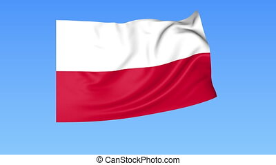 Waving flag of Poland, seamless loop. Exact size, blue background. Part of all countries set. 4K ProRes with alpha