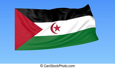 Waving flag of Sahrawi Arab Democratic Republic, seamless loop. Exact size, blue background. Part of all countries set