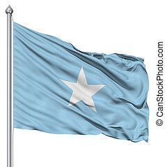 Waving Flag of Somalia - Realistic 3d flag of Somalia...