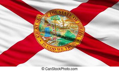 Waving Flag Of The US State of Florida with a red saltire and official seal.