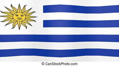 Waving Flag of Uruguay Looping Background