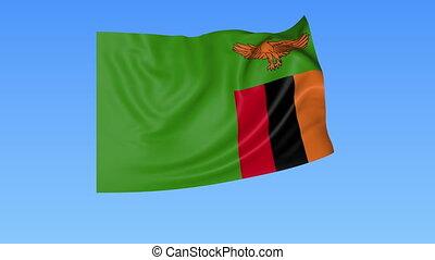 Waving flag of Zambia, seamless loop. Exact size, blue...