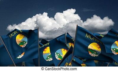Waving Montana State Flags