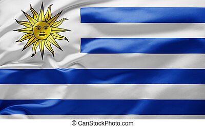 Waving national flag of Argentina