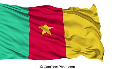 Waving national flag of Cameroon