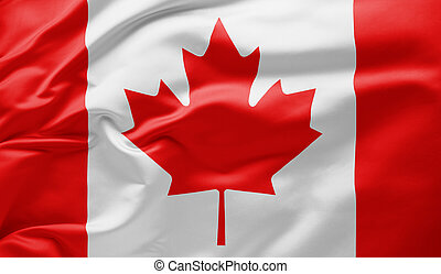 Waving national flag of Canada