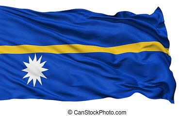 Waving national flag of Nauru