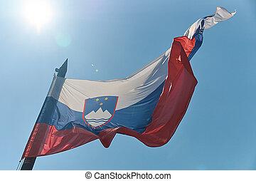 Waving National flag of Slovenia on blue sky background