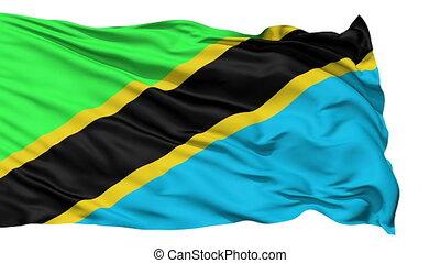 Waving national flag of Tanzania