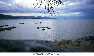 waving palm branch on a background of cloudy sky and sea in the beach Koh Samui. HD. 1920x1080