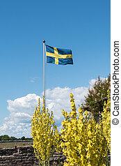 Waving swedish flag