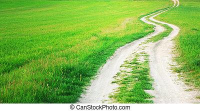 Way  in green meadow