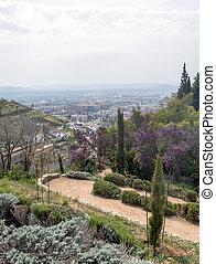 Way into a garden of Granada