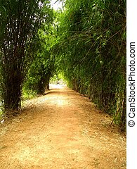 Way To Farm road in rural areas