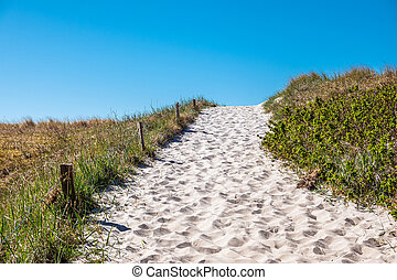 Way to the beach on the Baltic Sea coast in Germany