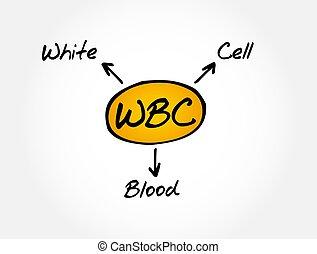 wbc, branca, -, acrônimo, médico, sangue, conceito, fundo, ...