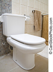 wc room - image of the inside of a bathroom with wc and ...