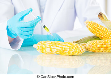 we have no idea is genetic modification food meaning