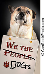 We the People/ Dogs.